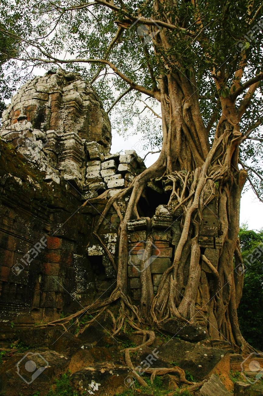 Runs of ancient Cambodian temple in the jungle. Stock Photo - 6491866