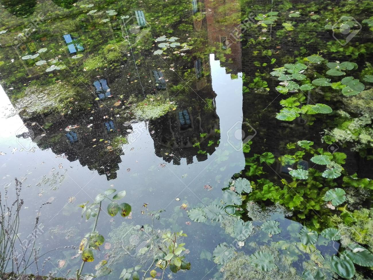 Mirroring - Silhouette of a castle façade mirrored in a moat, covered with aquatic plants. Germany 10.30.2016 - 68769726