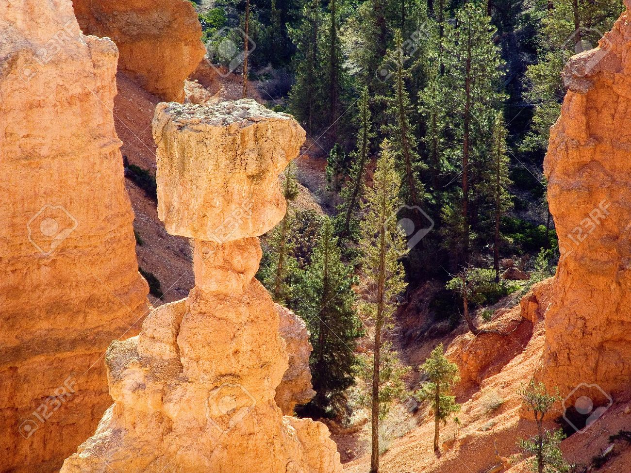 top of thor s hammer hoo doo at bryce canyon national park