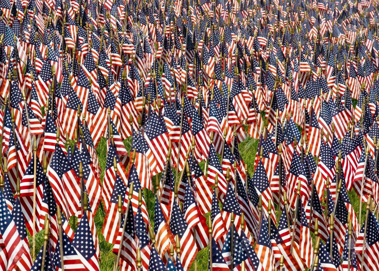 US Flags in a Field Stock Photo - 13344315