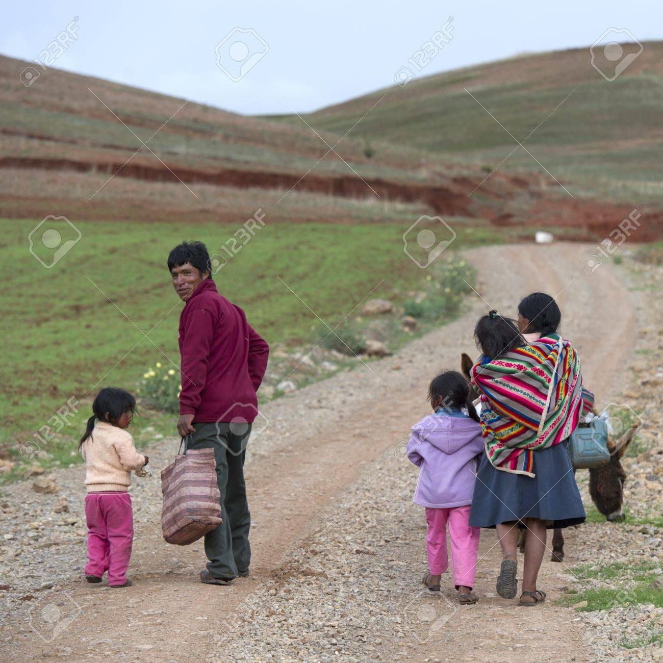 Family walking in a field with mule, Sacred Valley, Cusco Region, Peru Stock Photo - 17227833