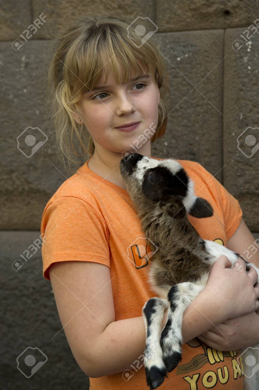 Close-up of a girl holding a kid goat, Sacred Valley, Cusco Region, Peru Stock Photo - 17175909