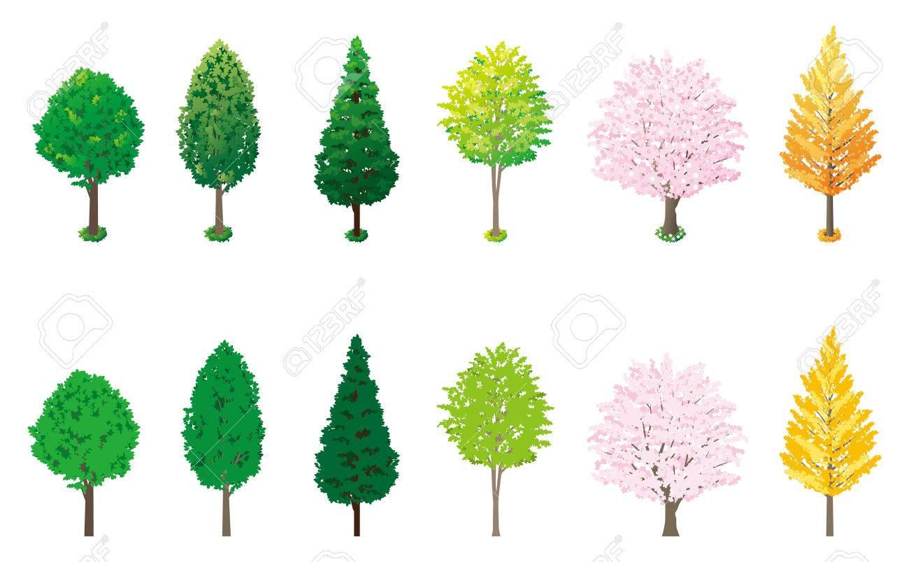 街路樹のイラスト素材ベクタ Image 24965102