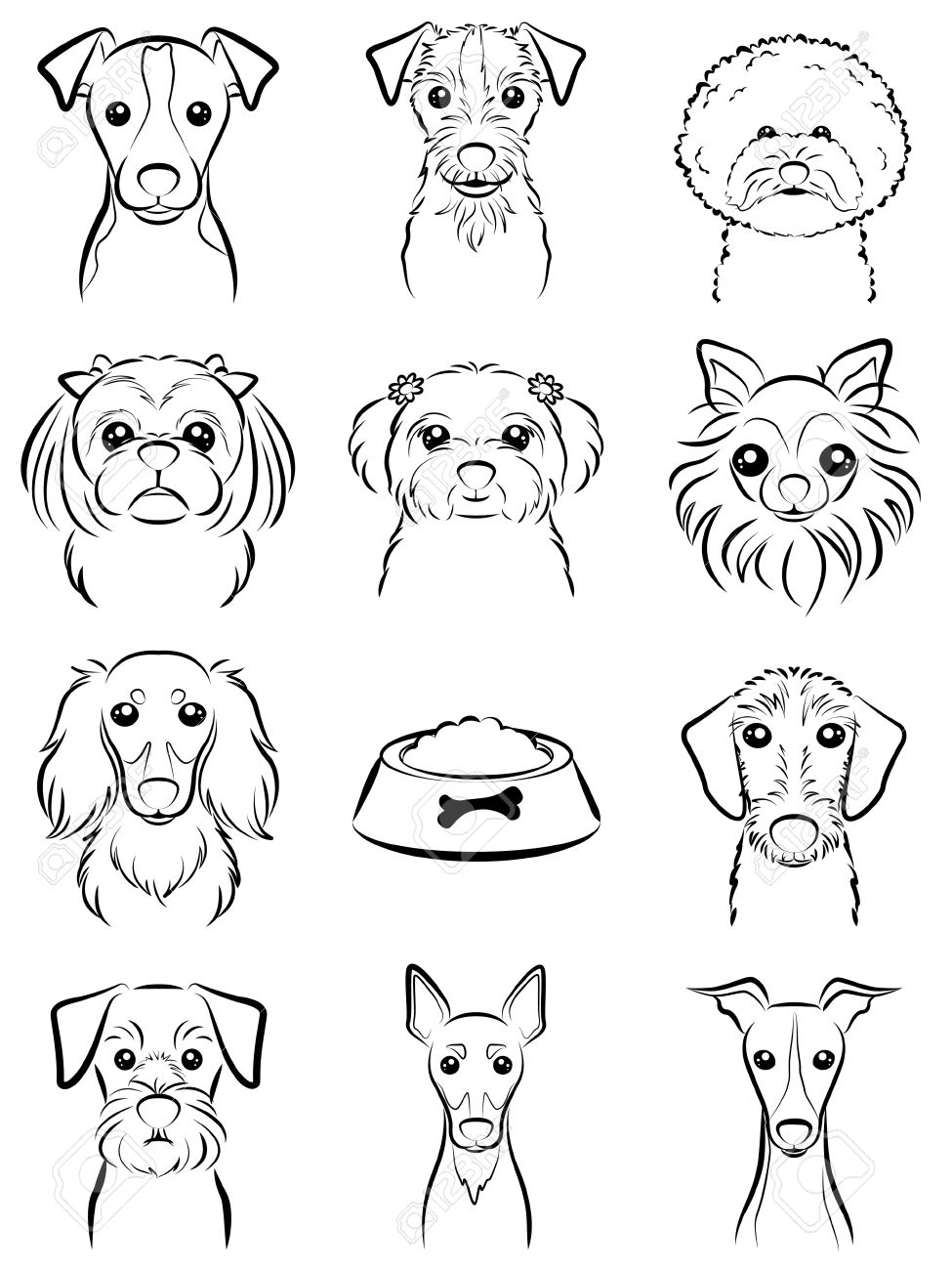 Dog / Line drawing - 31655864
