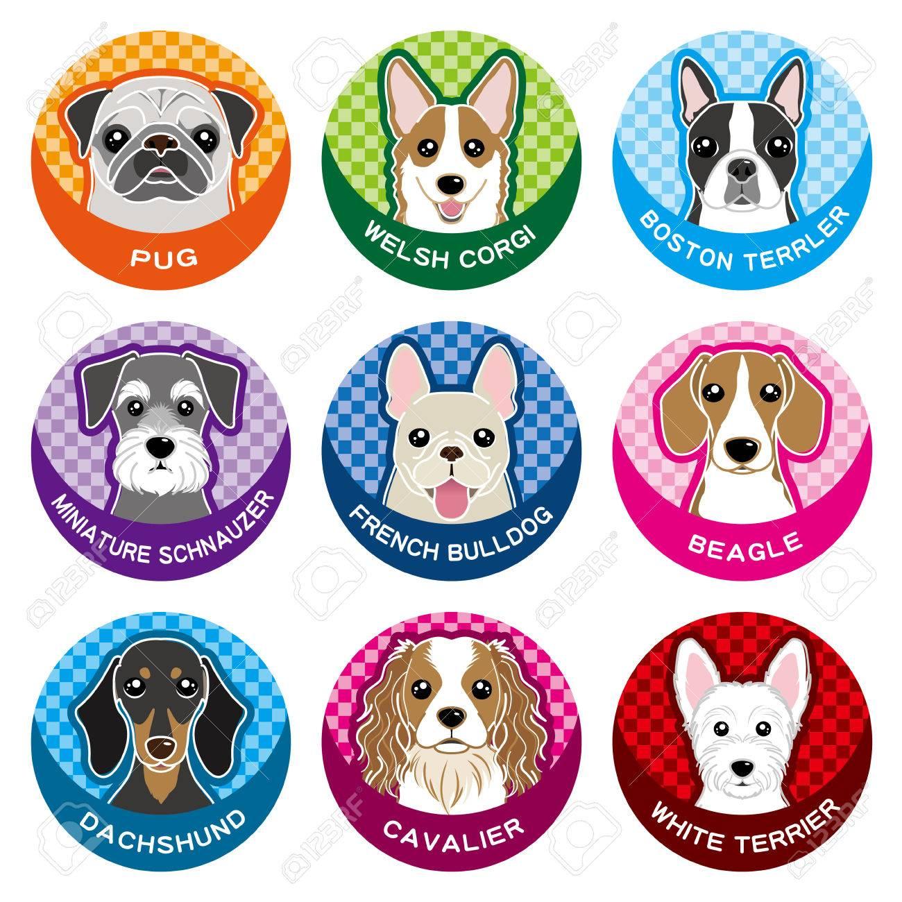 Dog / Nameplate - 32023697
