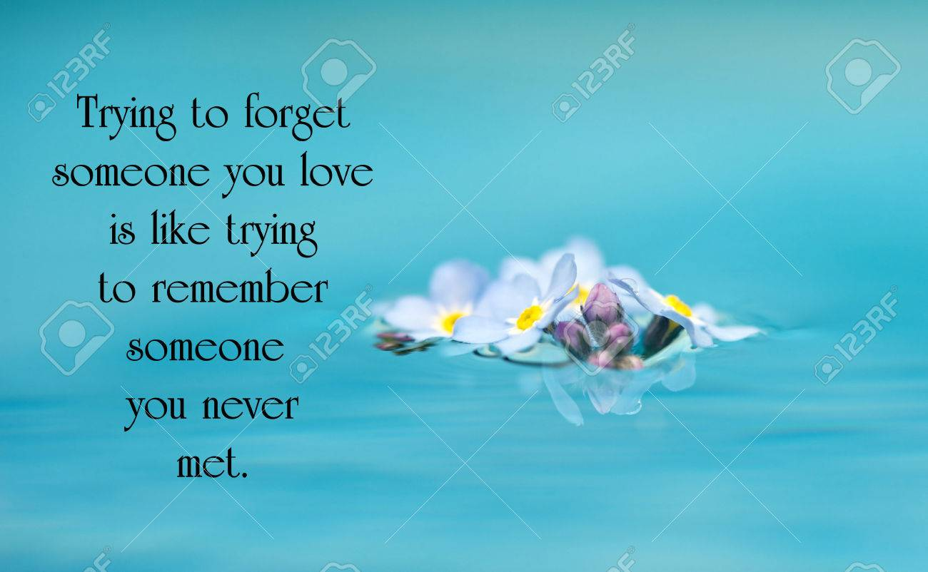 Inspirational Quote On Love With Beautiful Forget Me Not Flowers Floating  On Water. Stock Photo