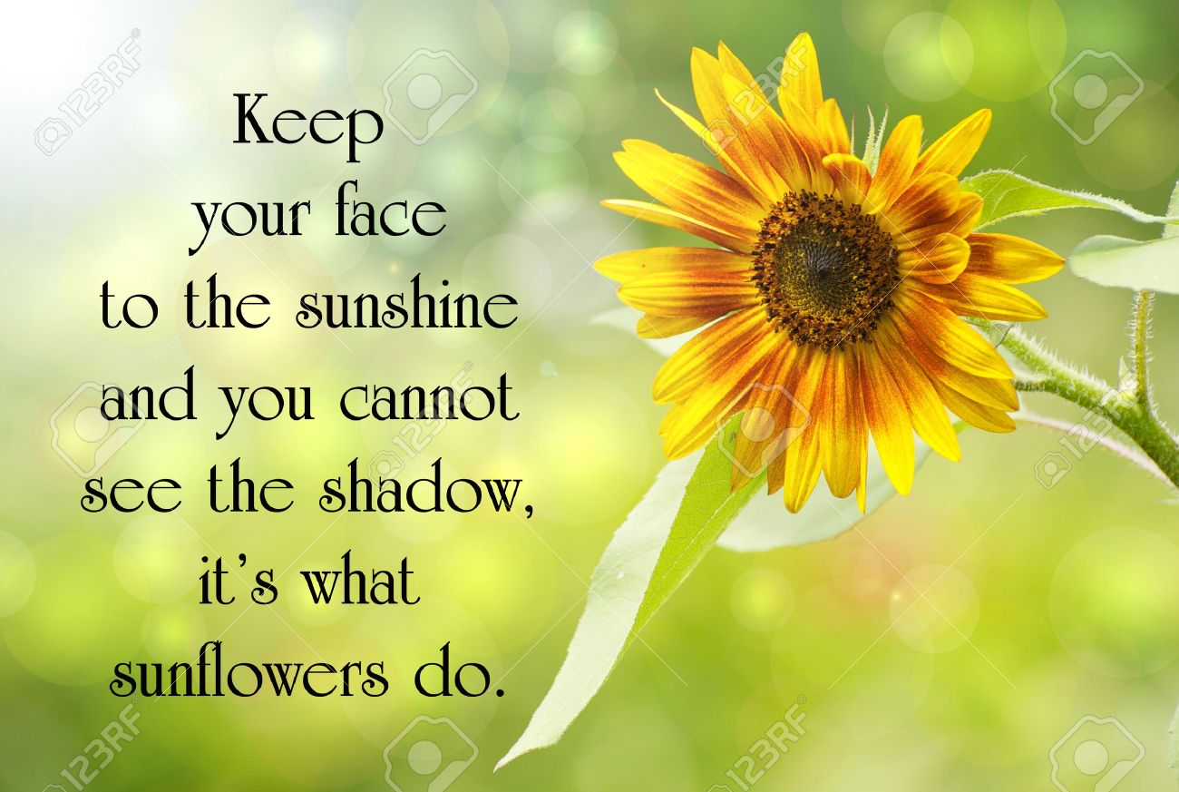 Inspirational quote on life, with a beautiful sunflower in the