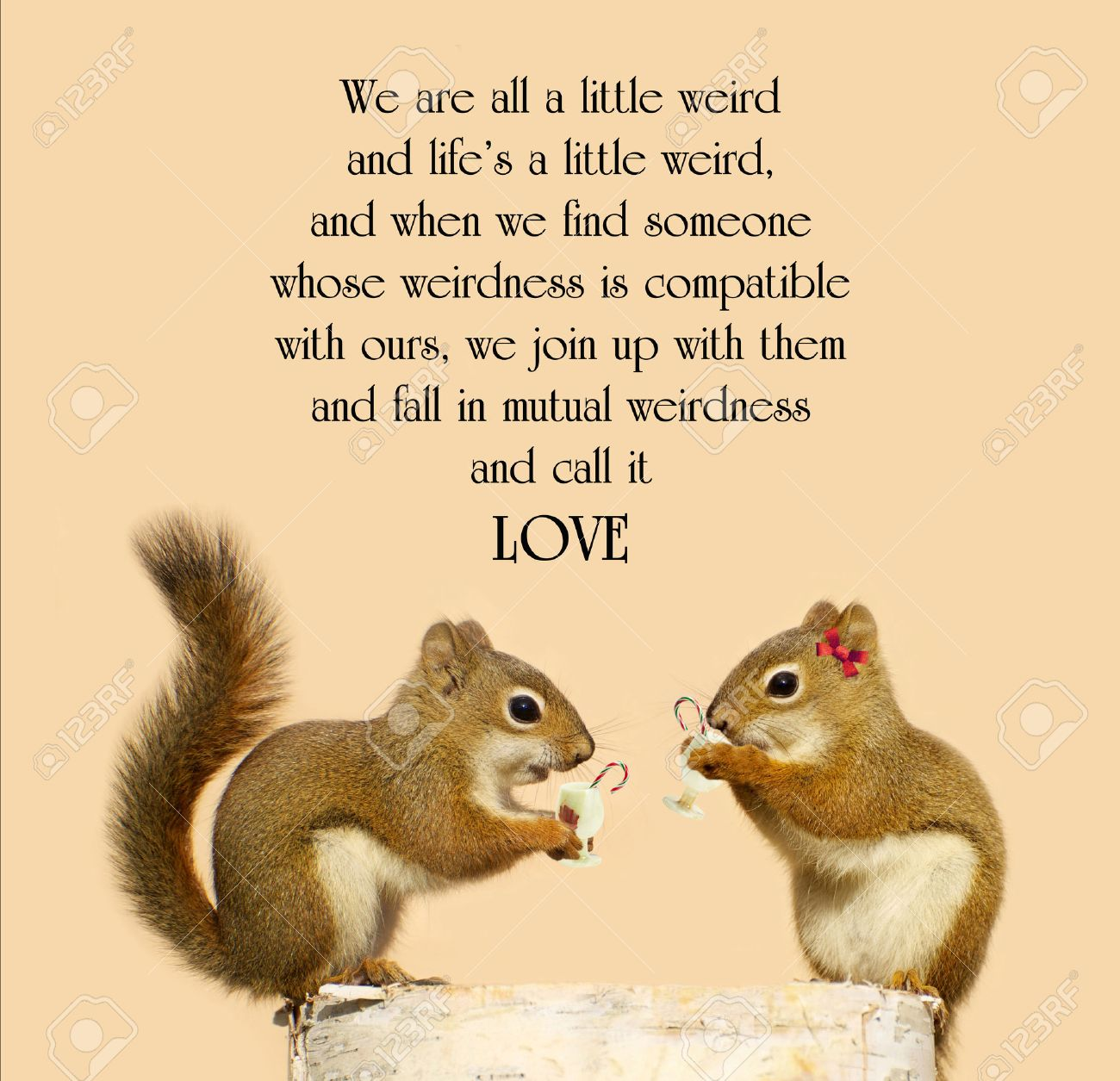 Inspirational Quote On Love With A Cute Pair Of Squirrels In Love, Enjoying  Some Eggnog