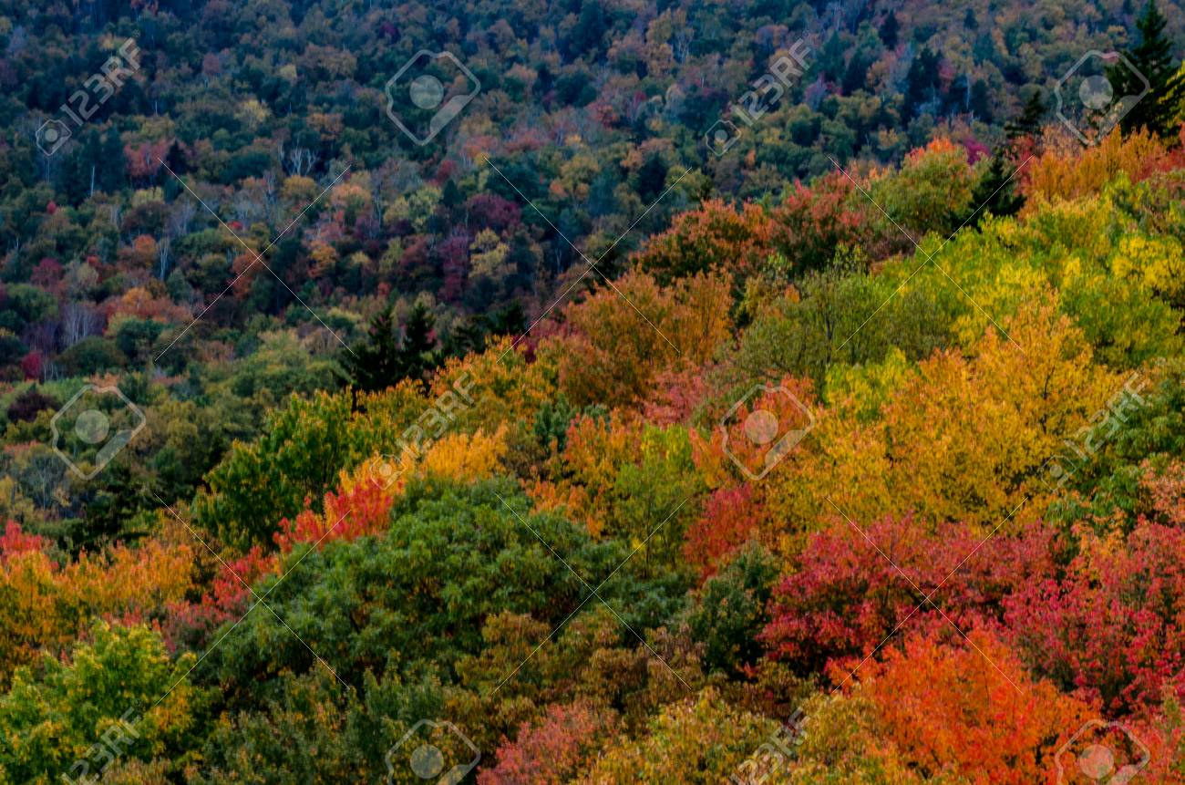 Blue Ridge Mountains Pop With Fall Colors Near Asheville North