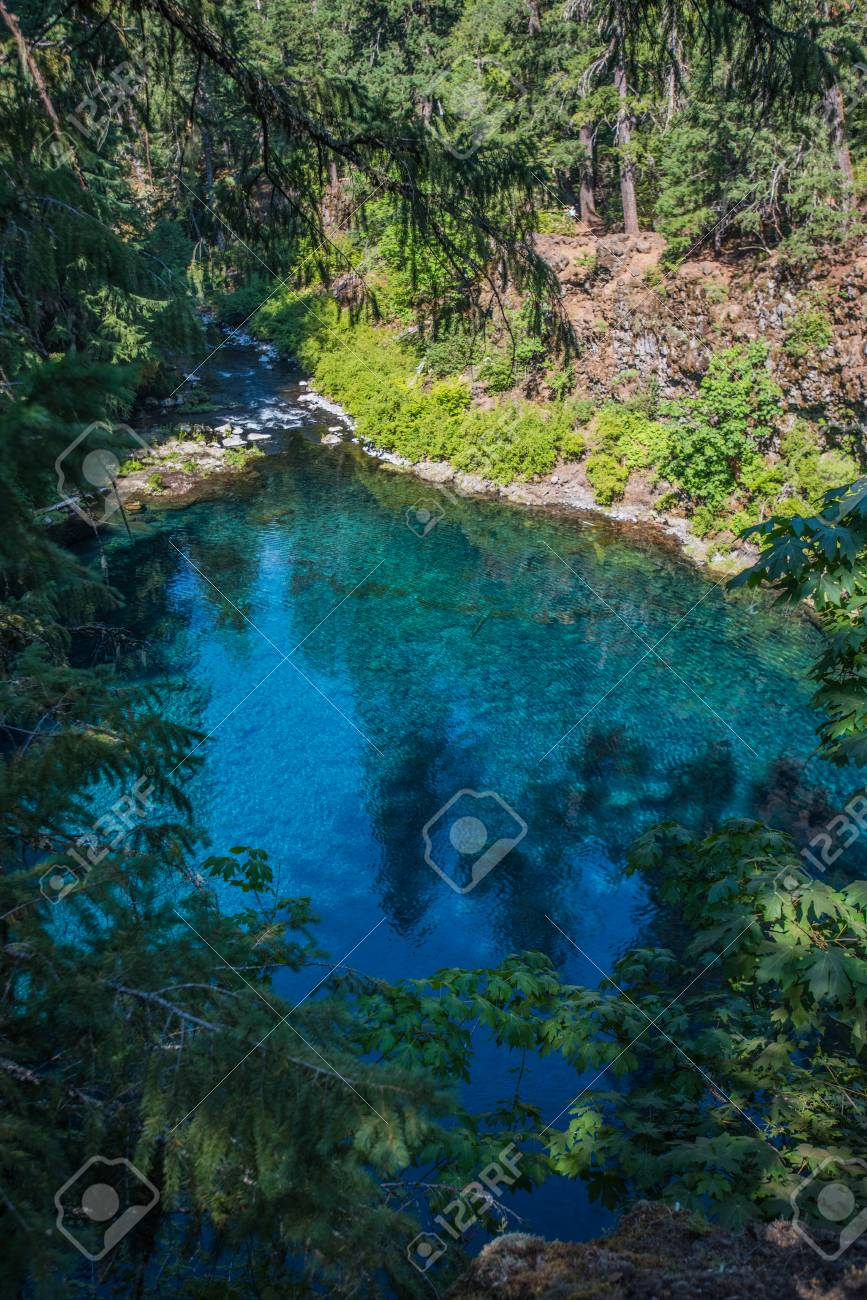 Oregons Blue Pool Through Trees Fills From Underground Water Sources Stock Photo