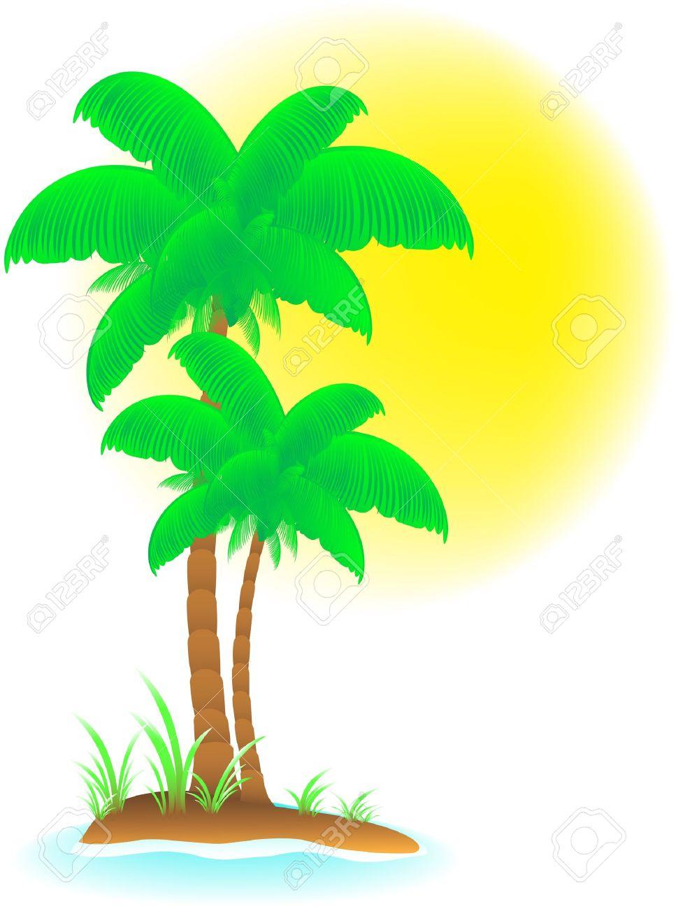 Fondo Aislado Tropical Con Palmeras La Playa Y El Sol