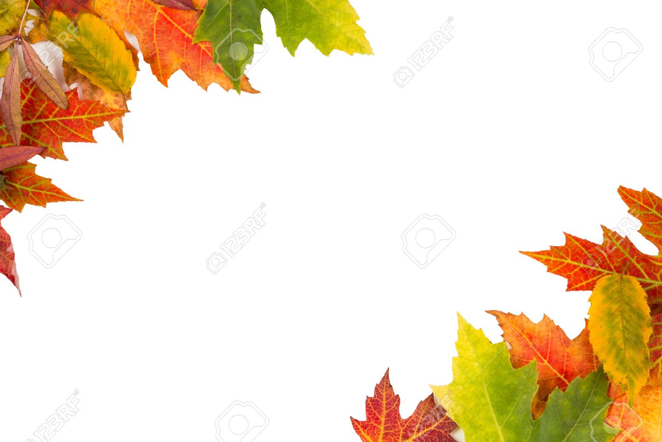Hintergrund Rahmen Von Isolierten Bunten Herbstblätter Oben Links ...