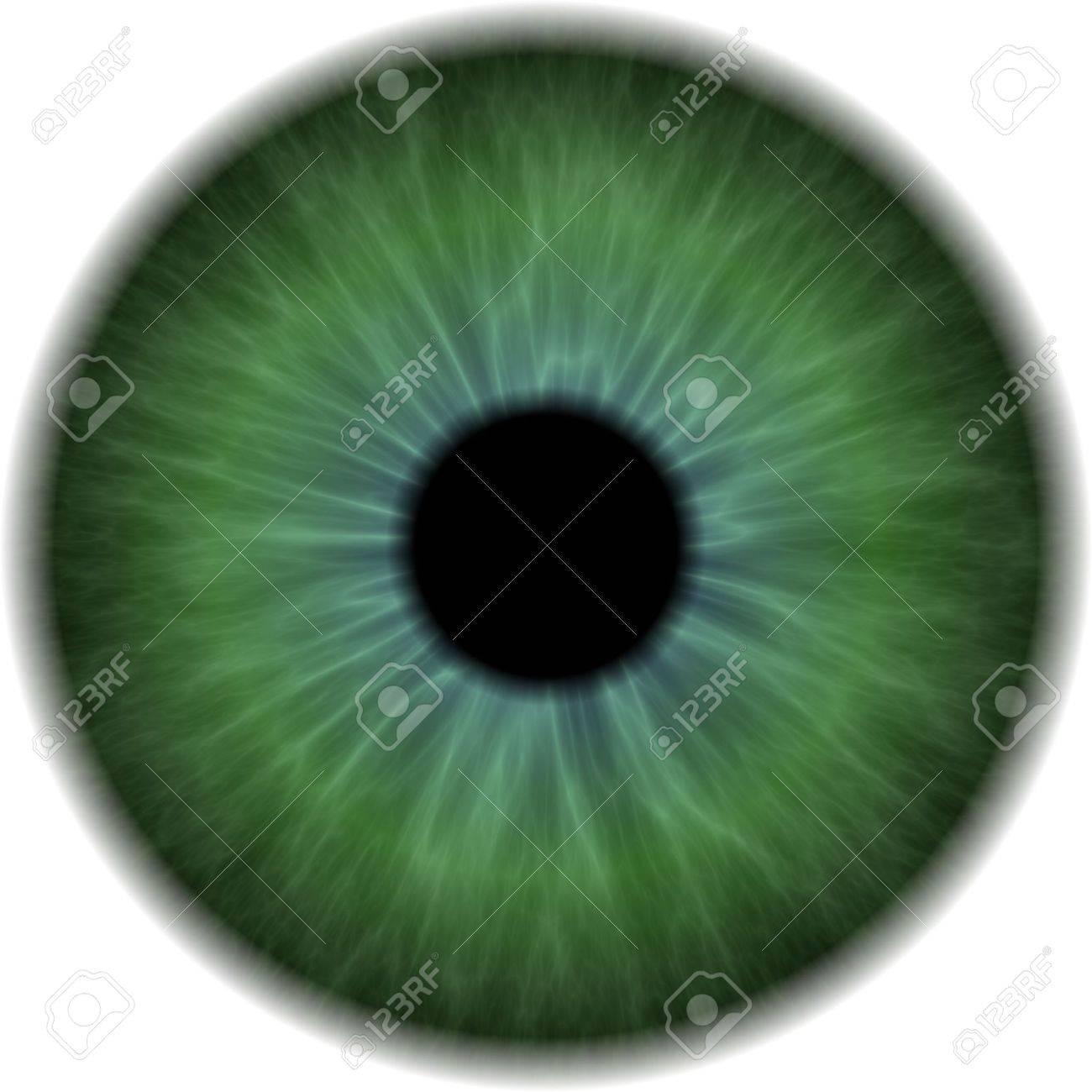 Eyeball Clip Art Isolated On A White Background Stock Photo ...