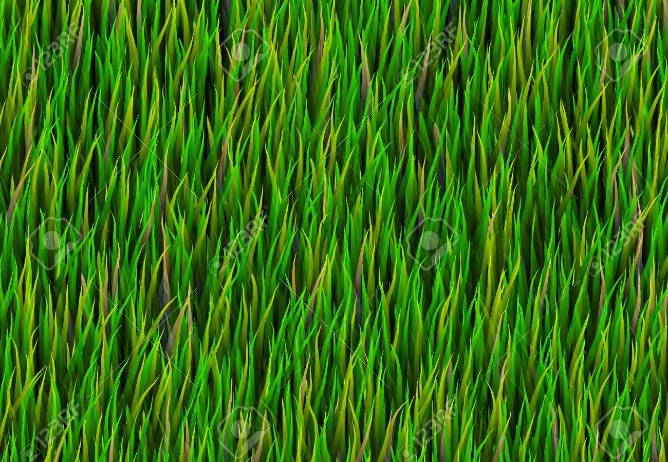 Green Grass Patch Abstract Background Pattern Texture Stock Photo - 6581215
