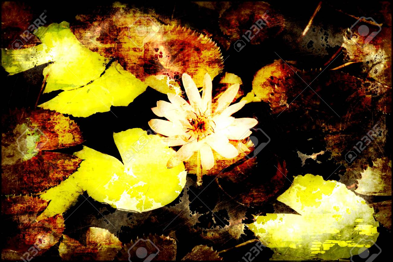 A Grunge Floral Decor Old Texture Background Stock Photo - 7249008