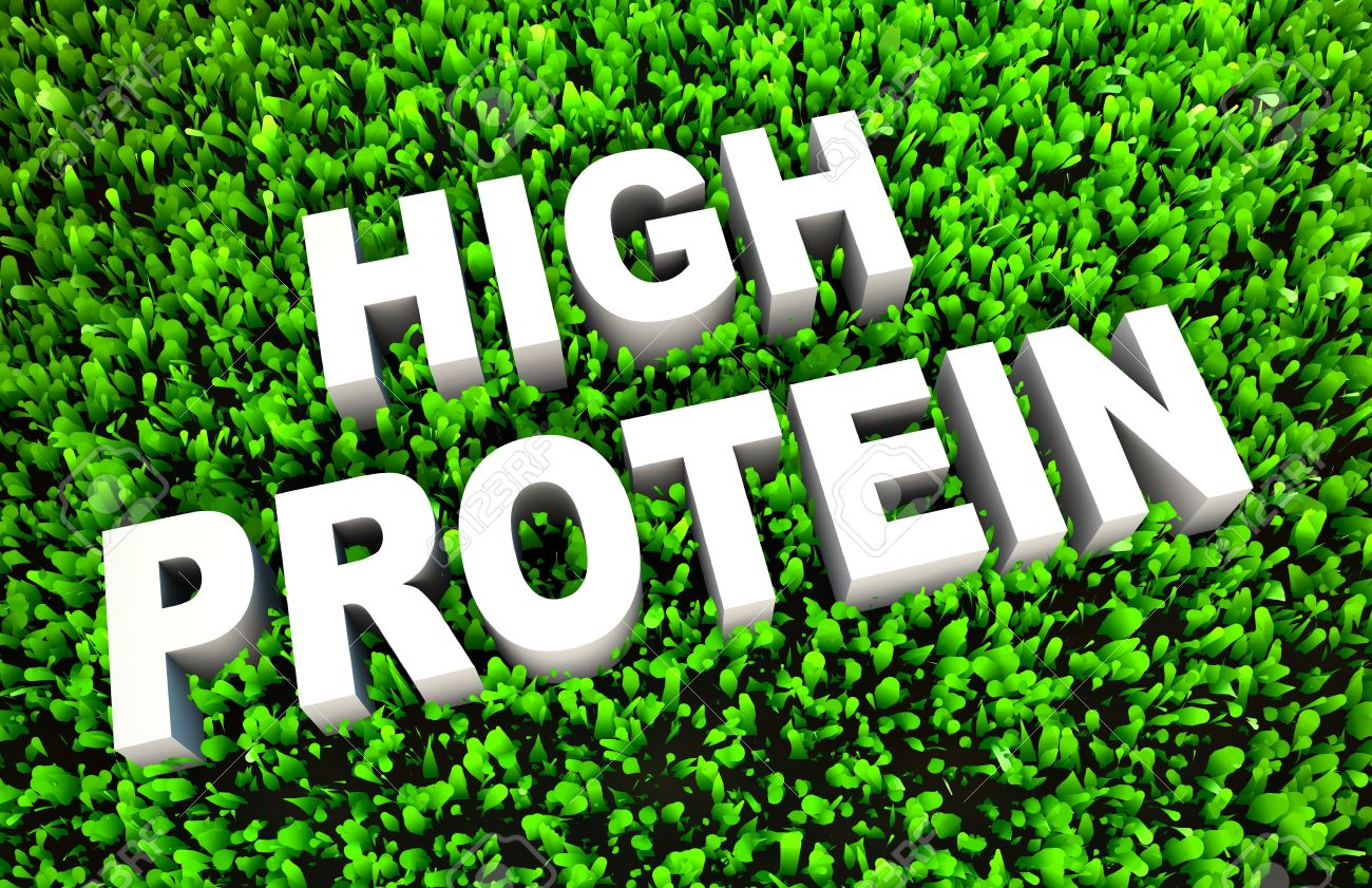 High Protein Diet Food As A Concept On Grass Stock Photo, Picture And Royalty Free Image. Image 20006216.