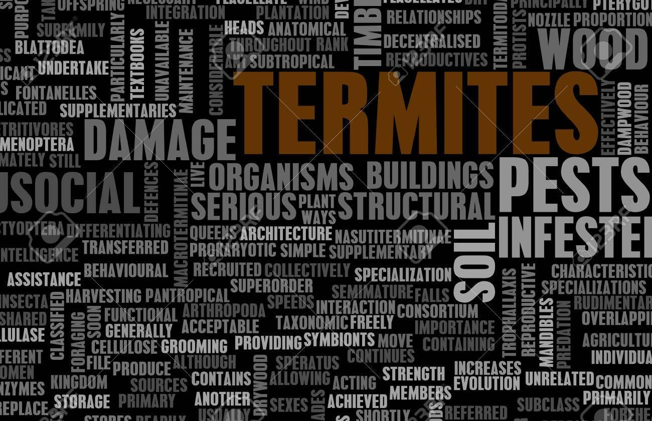 Termites Concept as a Pest Control Problem Standard-Bild - 24435052