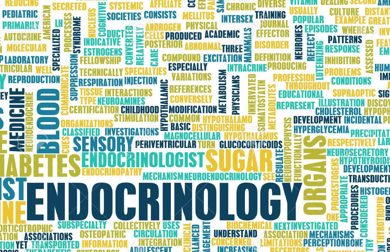 Endocrinology or Endocrine System as a Concept Standard-Bild - 25376972