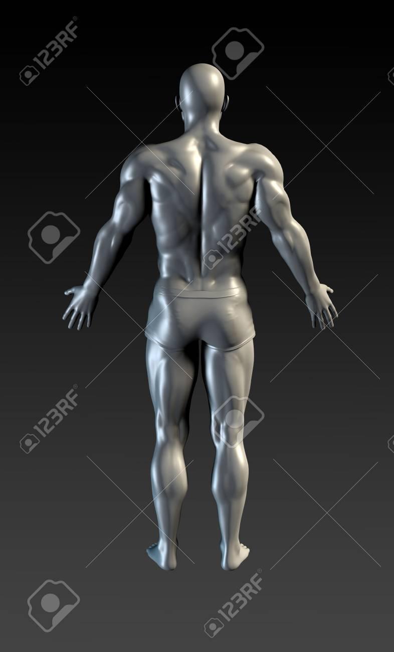 Menschlicher Körper-Präsentations-Hintergrund Für Medizinische ...