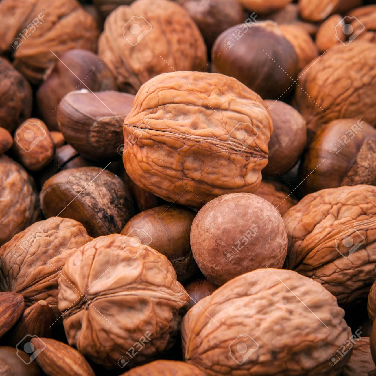 Nuez de macadamia fruto seco
