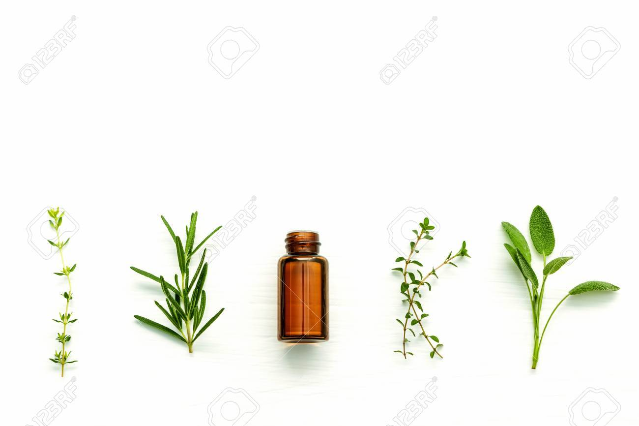 Bottle of essential oil with fresh herbal sage, rosemary, lemon thyme and thyme setup with flat lay on white wooden table. - 65511921