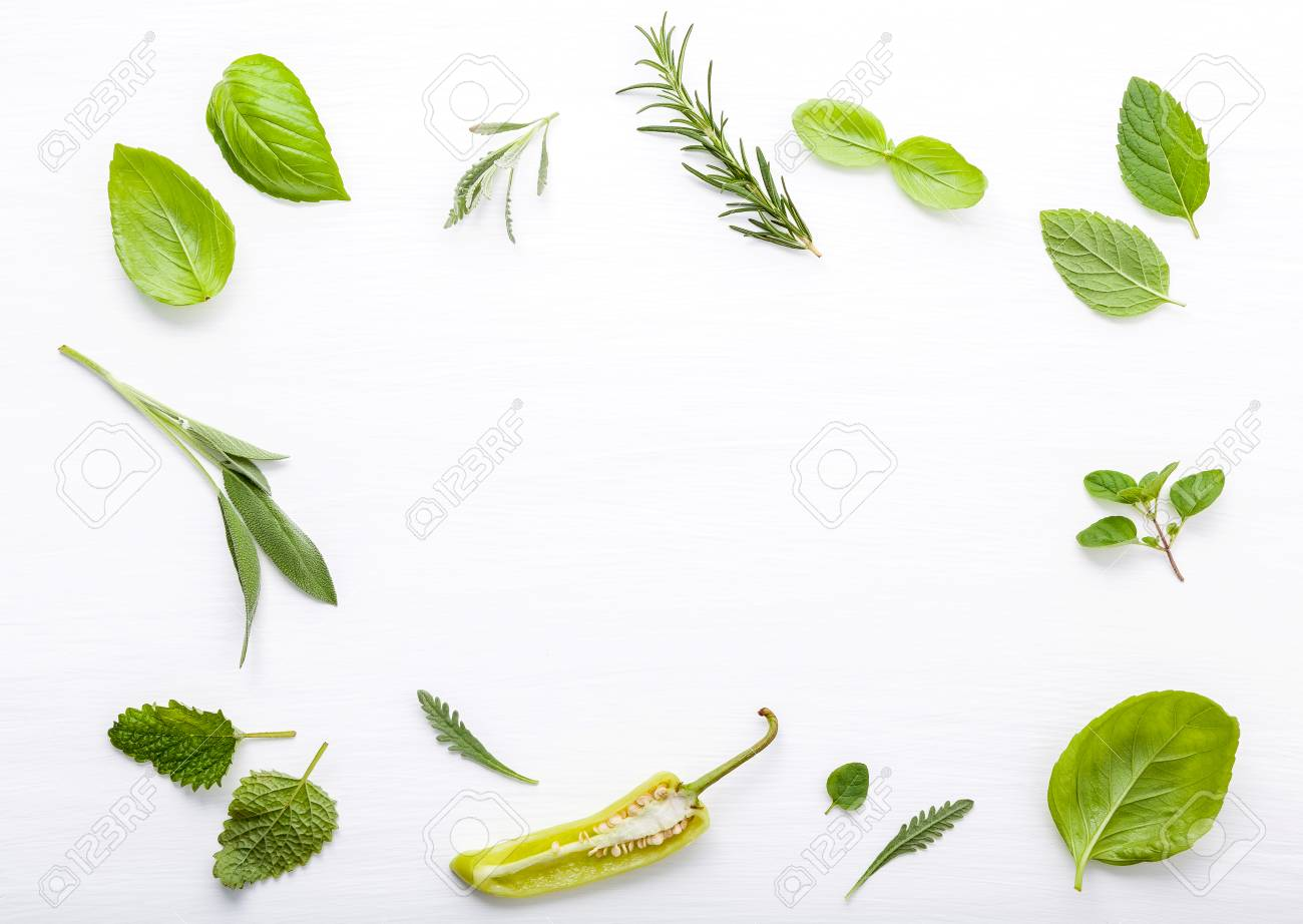 Various fresh herbs for cooking ingrediens peppermint , sweet basil ,rosemary,oregano, sage and lemon thyme on white wooden background with flat lay and copy space. - 99062489