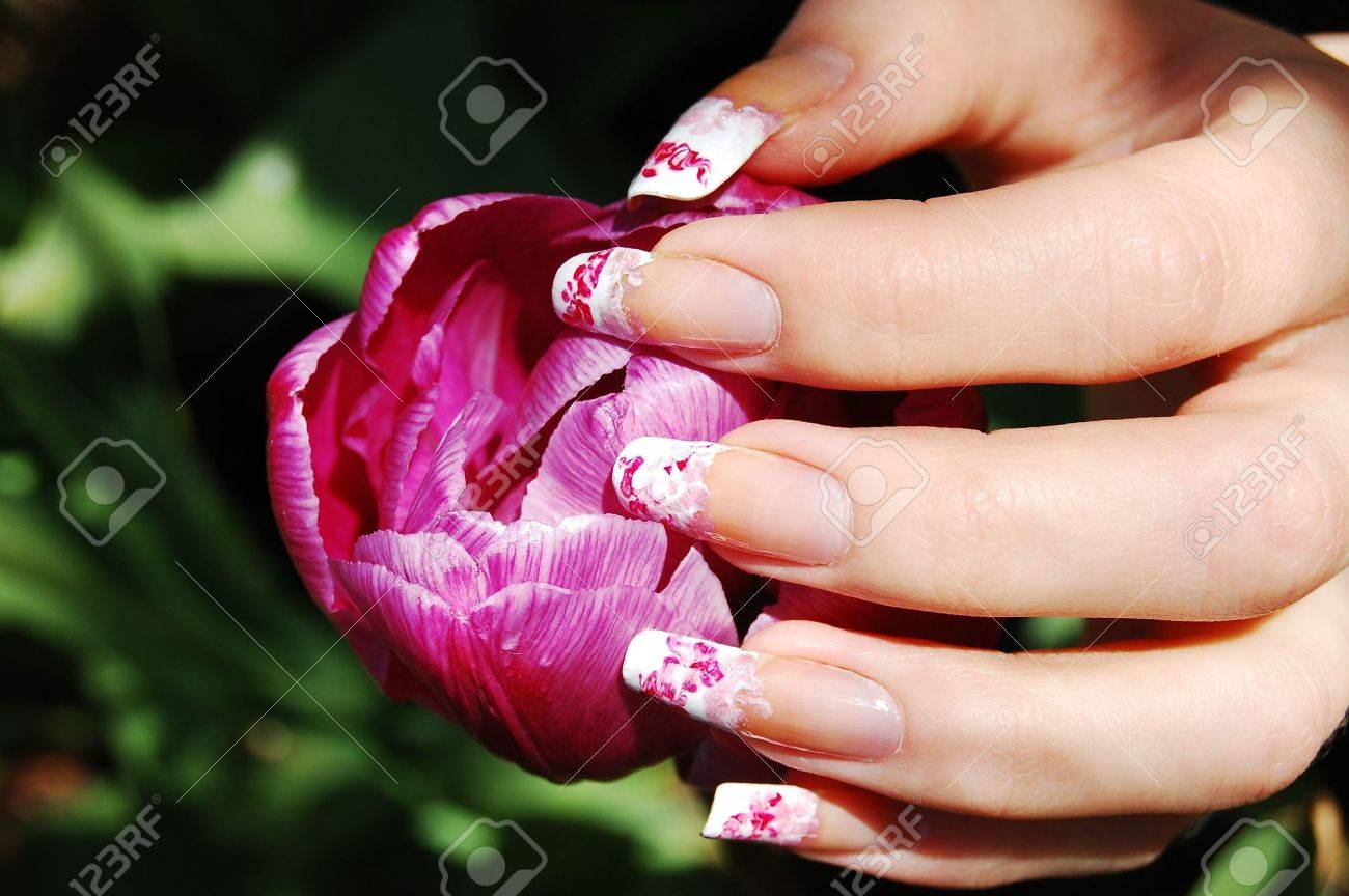 Manicure On Long Real Nails Stock Photo, Picture And Royalty Free ...