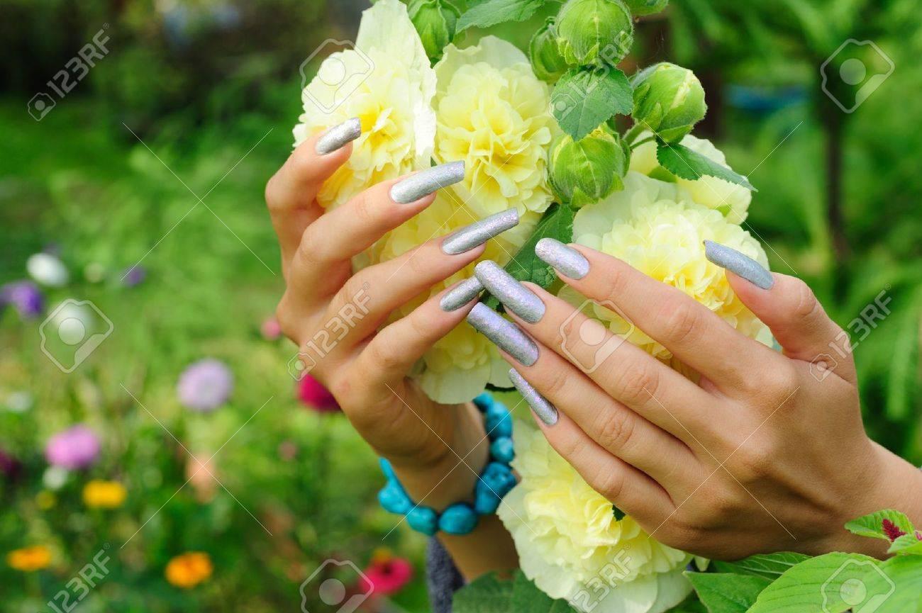 Plata Manicura En Las Uñas Largas Real Sobre Fondo Malva Flor Fotos ...