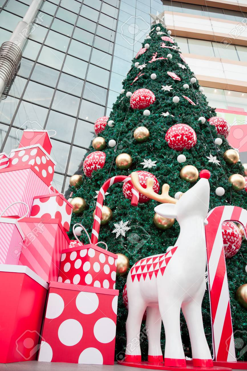 Big Christmas Tree, Gift Box And White Reindeer Color Are Arrange ...