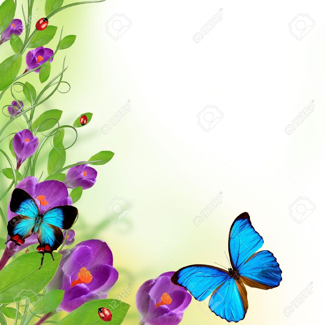 Beautiful floral design stock photo picture and royalty free image beautiful floral design stock photo 14763736 izmirmasajfo