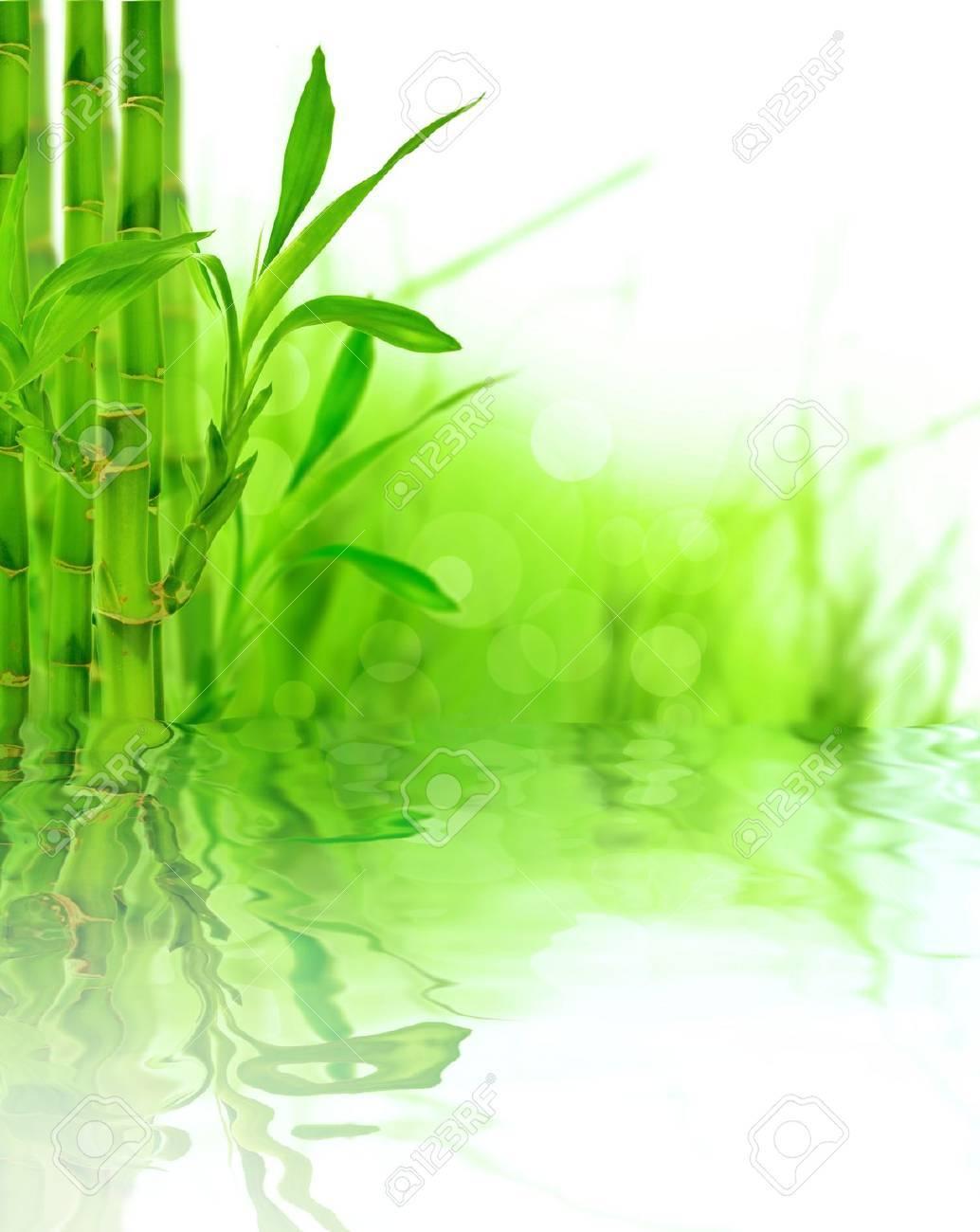 Bamboo background Stock Photo - 14864549