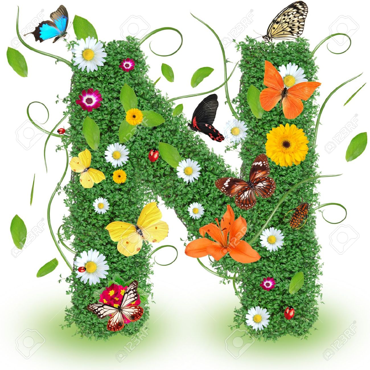 Beautiful Spring Letter N Stock Photo Picture And Royalty Free