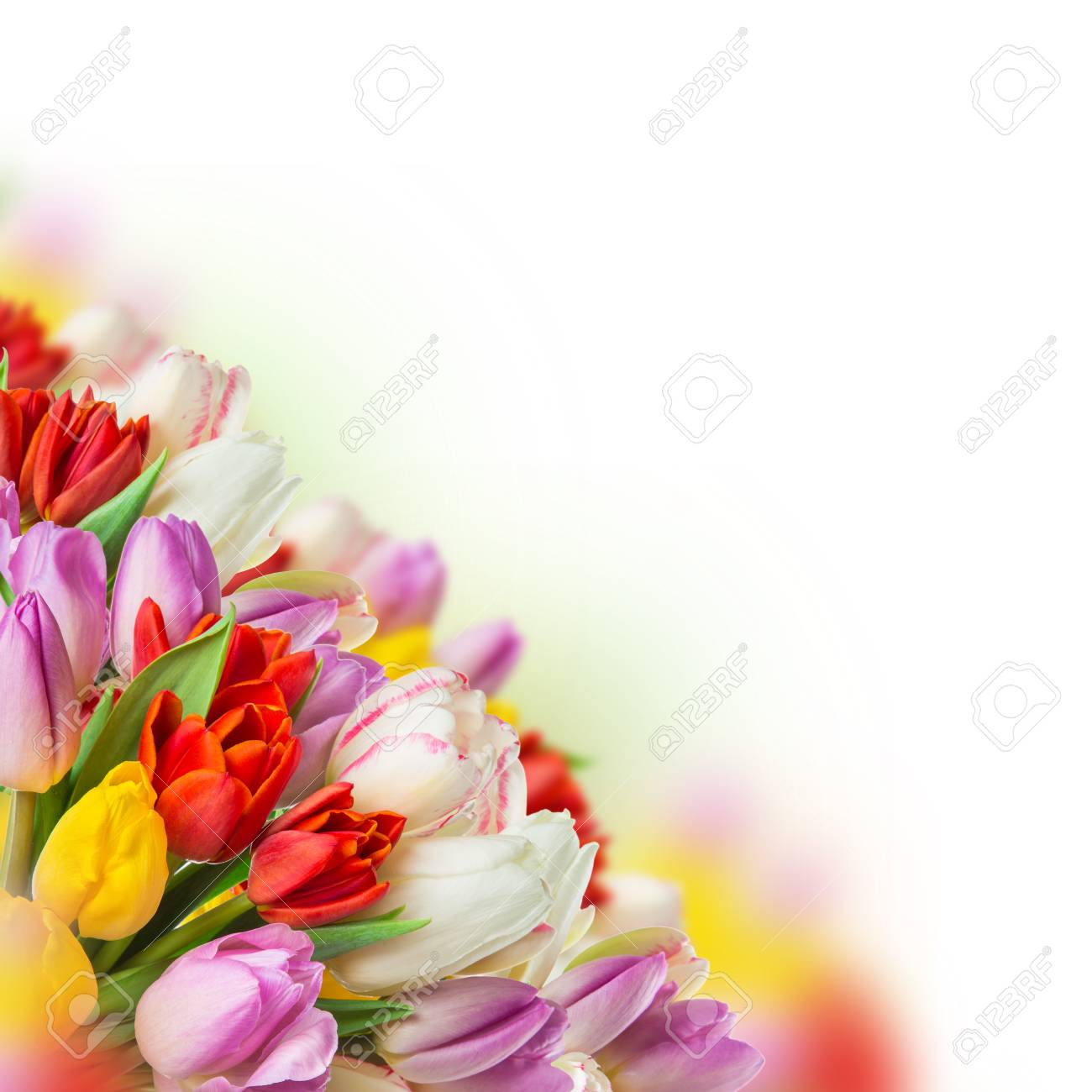 Tulips Over Blurred Green Background Bouquet Of Spring Easter
