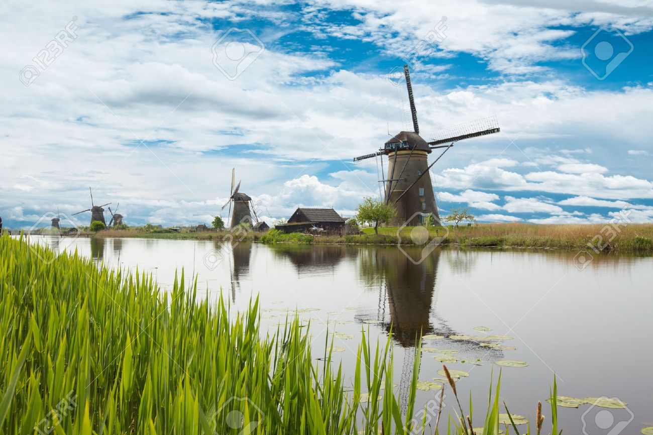 Lake vegetation with traditional wind mills. Holland - 53126929
