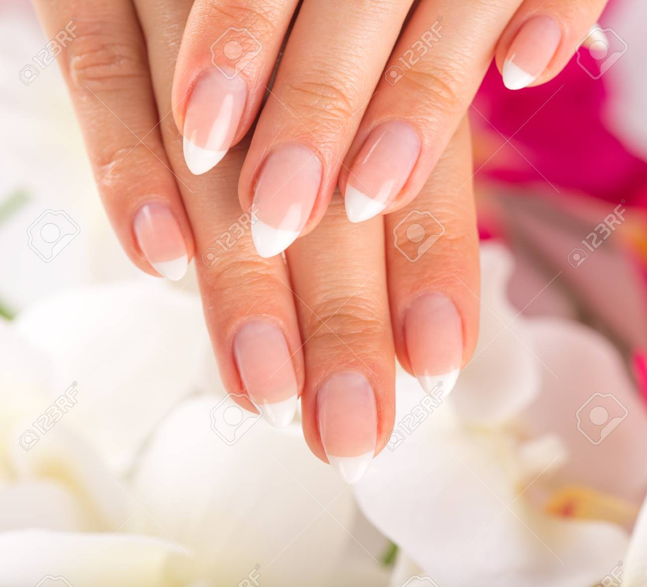 Beautiful Woman\'s Nails, French Manicure, Close-up. Stock Photo ...