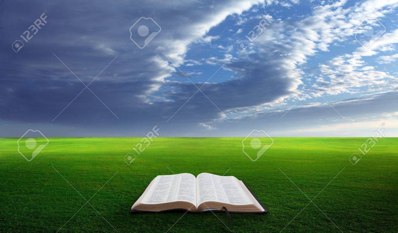 Open bible in a field with green grassy hills. Stock Photo - 14208059