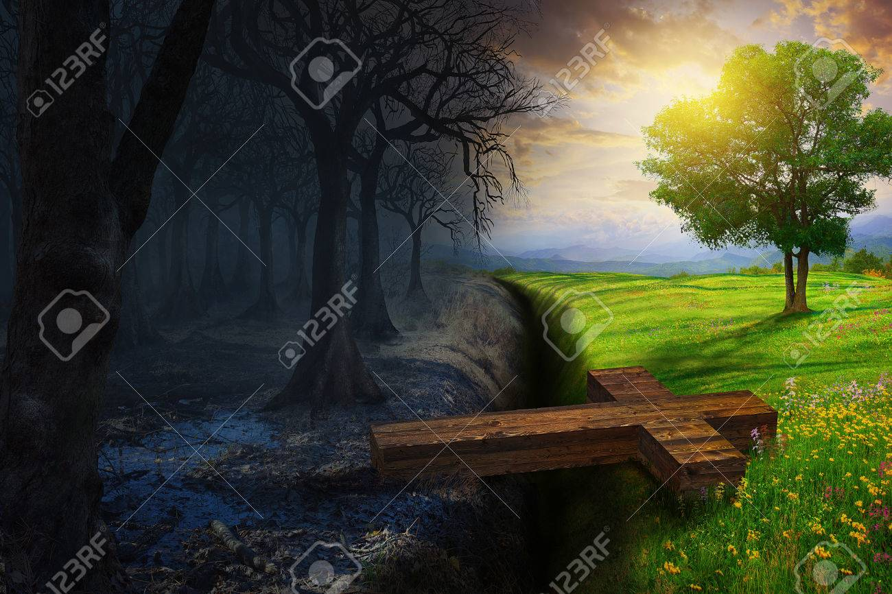 A cross bridges the gap between a dead forest and a beautiful meadow. - 57162414