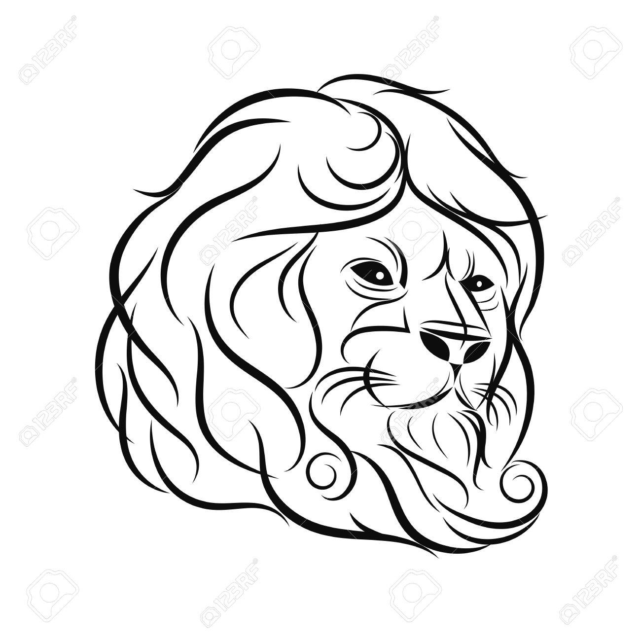 hand draw lion head outline design on gray background stock vector 64603914