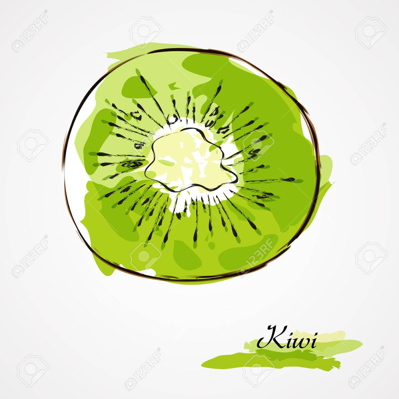 Kiwi Slice Drawing Hand Drawn Vector Kiwi