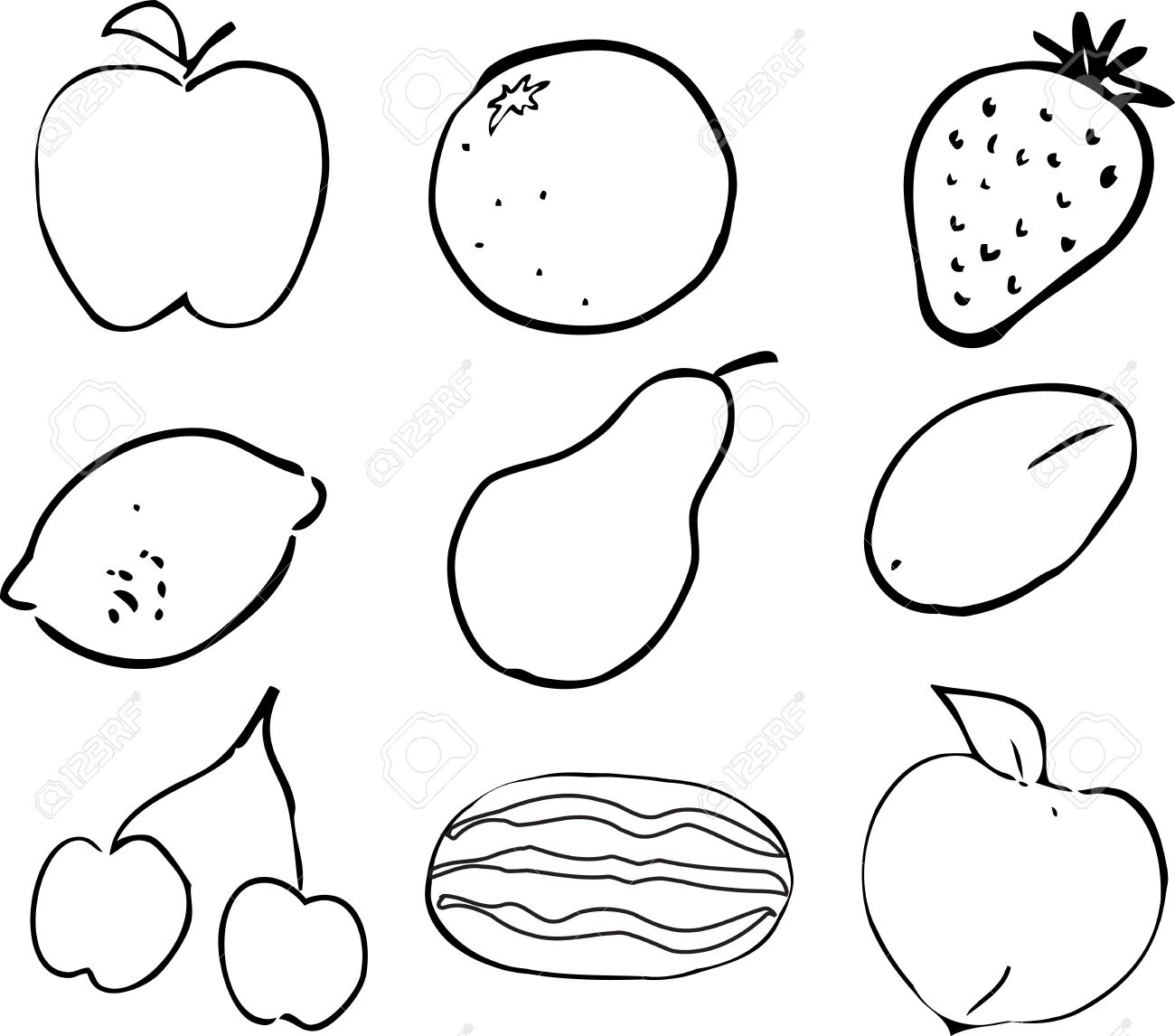 black u0026 white lineart illustration of fruits hand drawn look