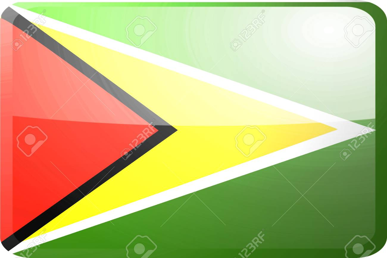 Flag of Guyana, national country symbol illustration glossy button icon Stock Illustration - 4648087