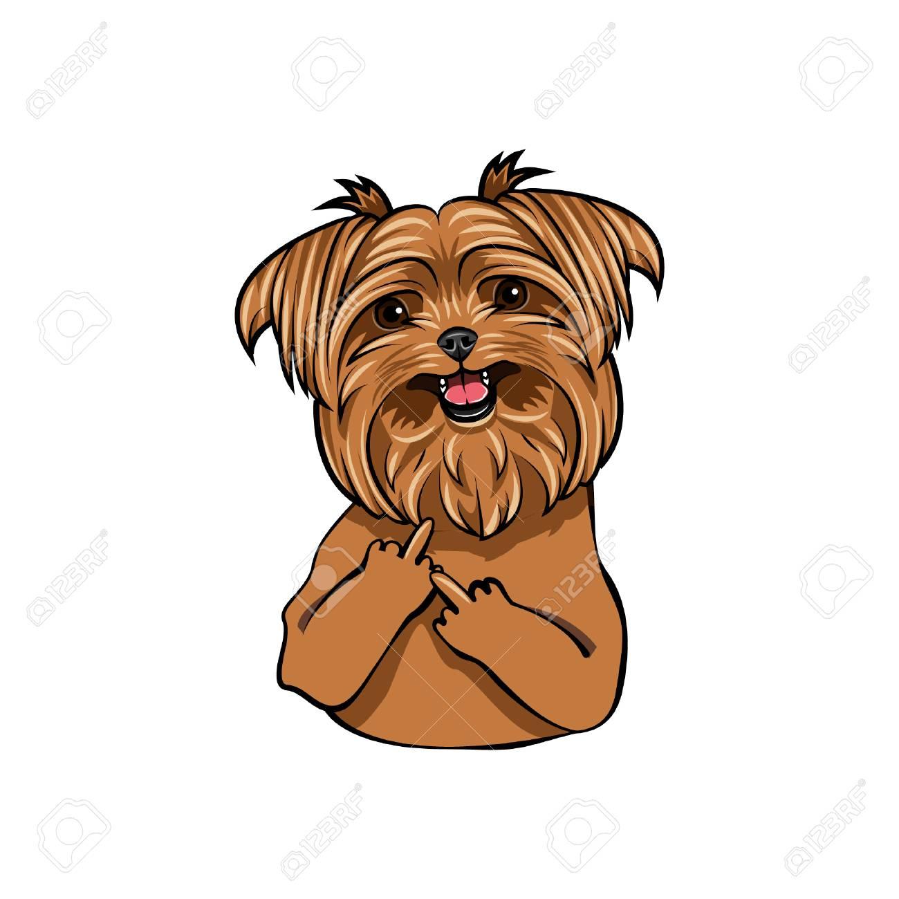 Yorkshire Terrier Dog Middle Finger Gesture Vector Illustration