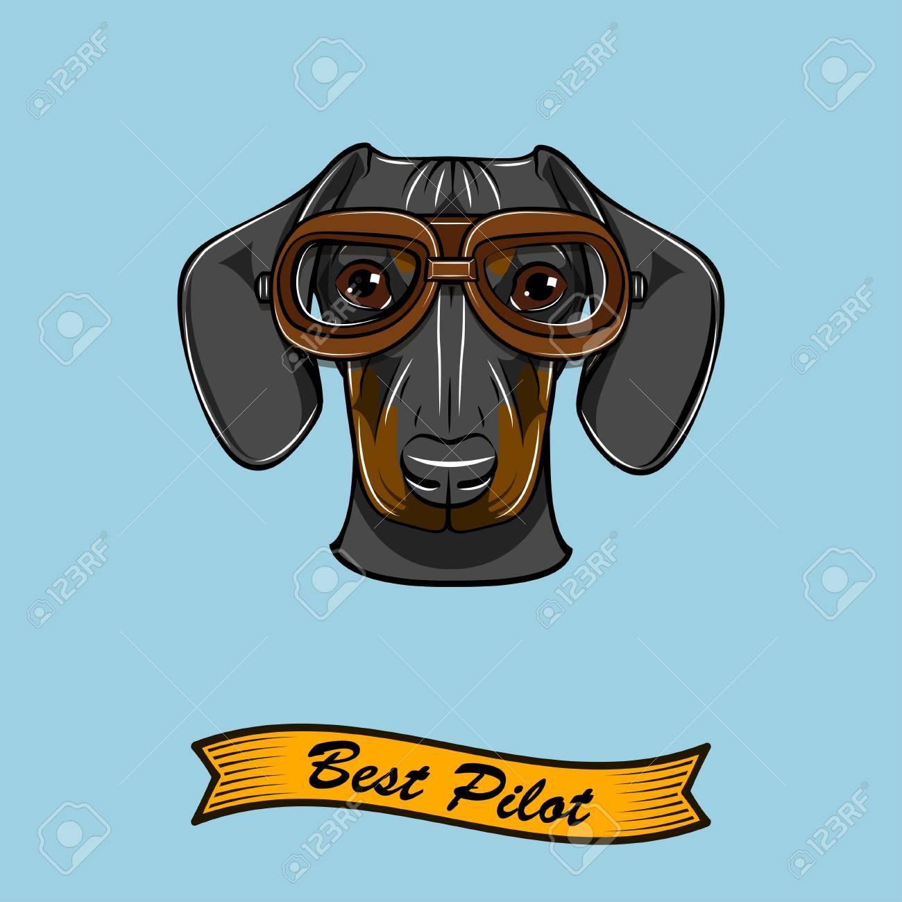 5d60843f95 Dachshund dog pilot with Aviators glasses Best pilot inscription Vector  illustration Stock Vector - 100905770
