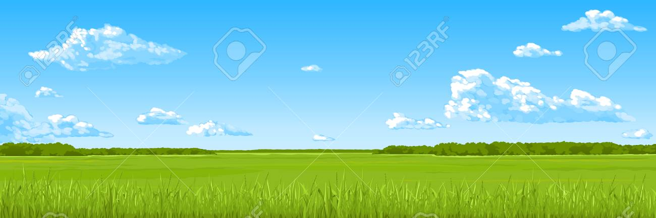 Panorama - the summer field with a green grass, the blue sky, clouds. Vector drawing. - 109756396