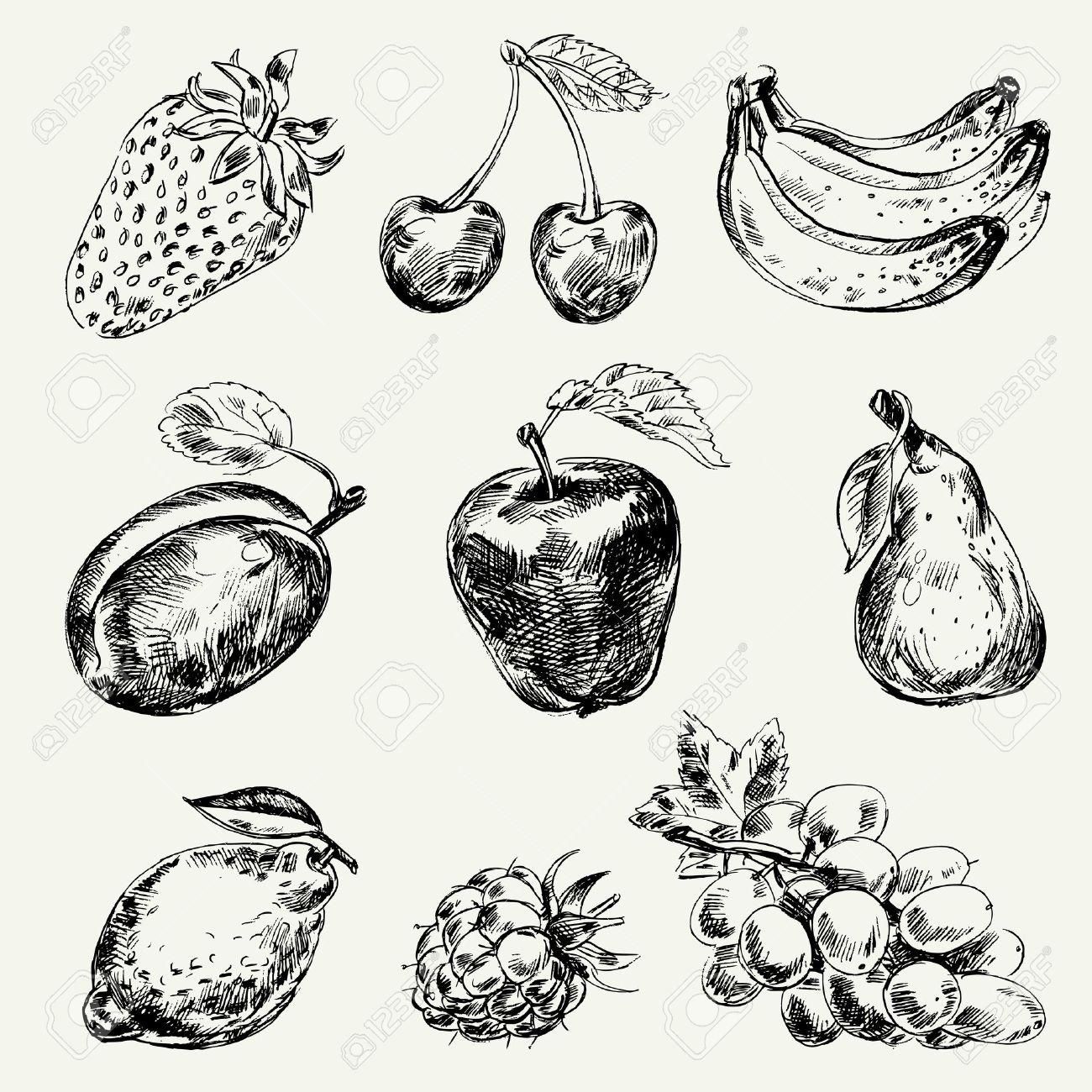 Set of fruits, Freehand drawing, Vector illustration Stock Vector - 16741456