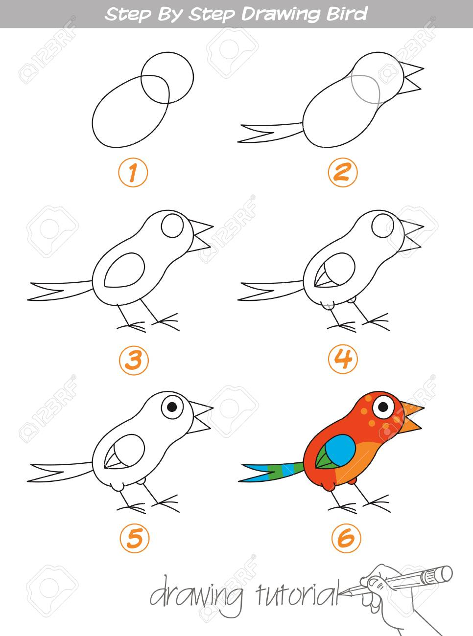 Drawing Tutorial Step By Step Drawing Bird Easy To Drawing