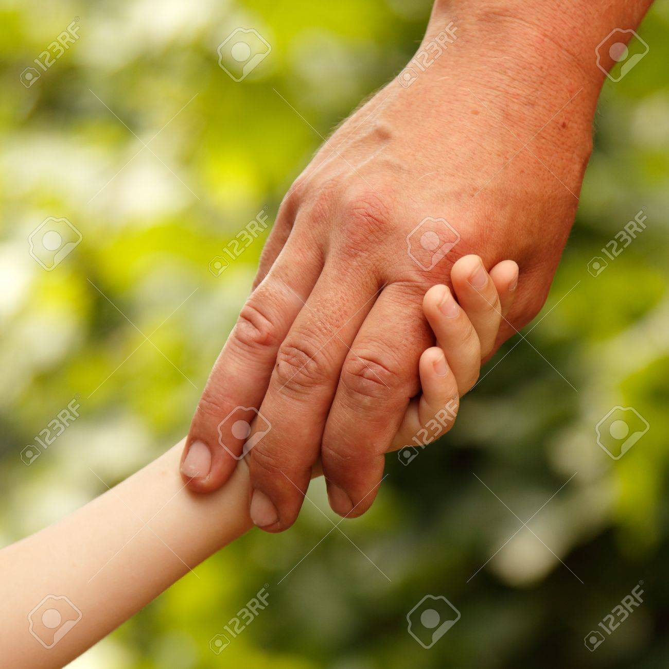 family father and child son hands green nature outdoor Stock Photo - 13404207