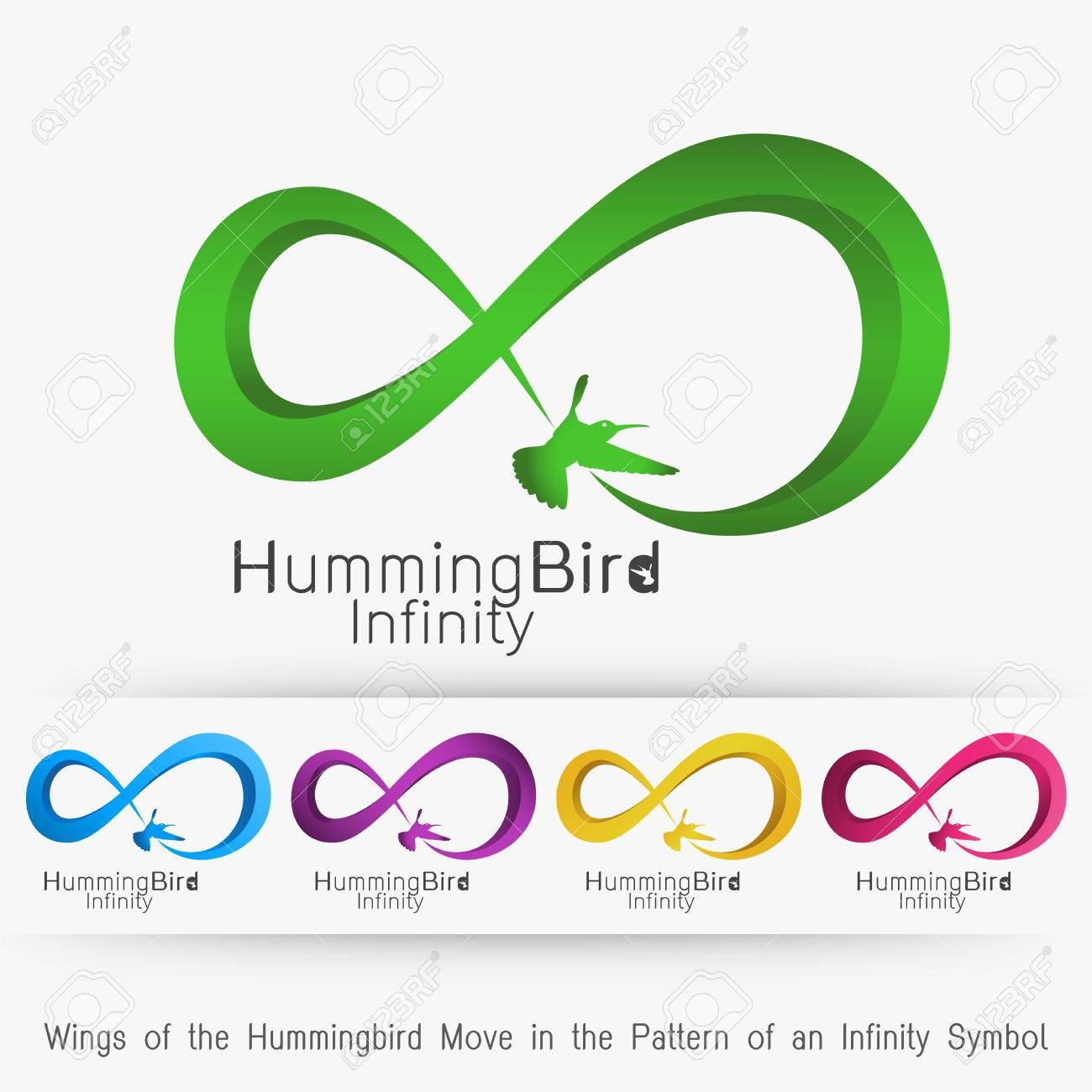 Wings Of The Hummingbird Move In The Pattern Of An Infinity Symbol