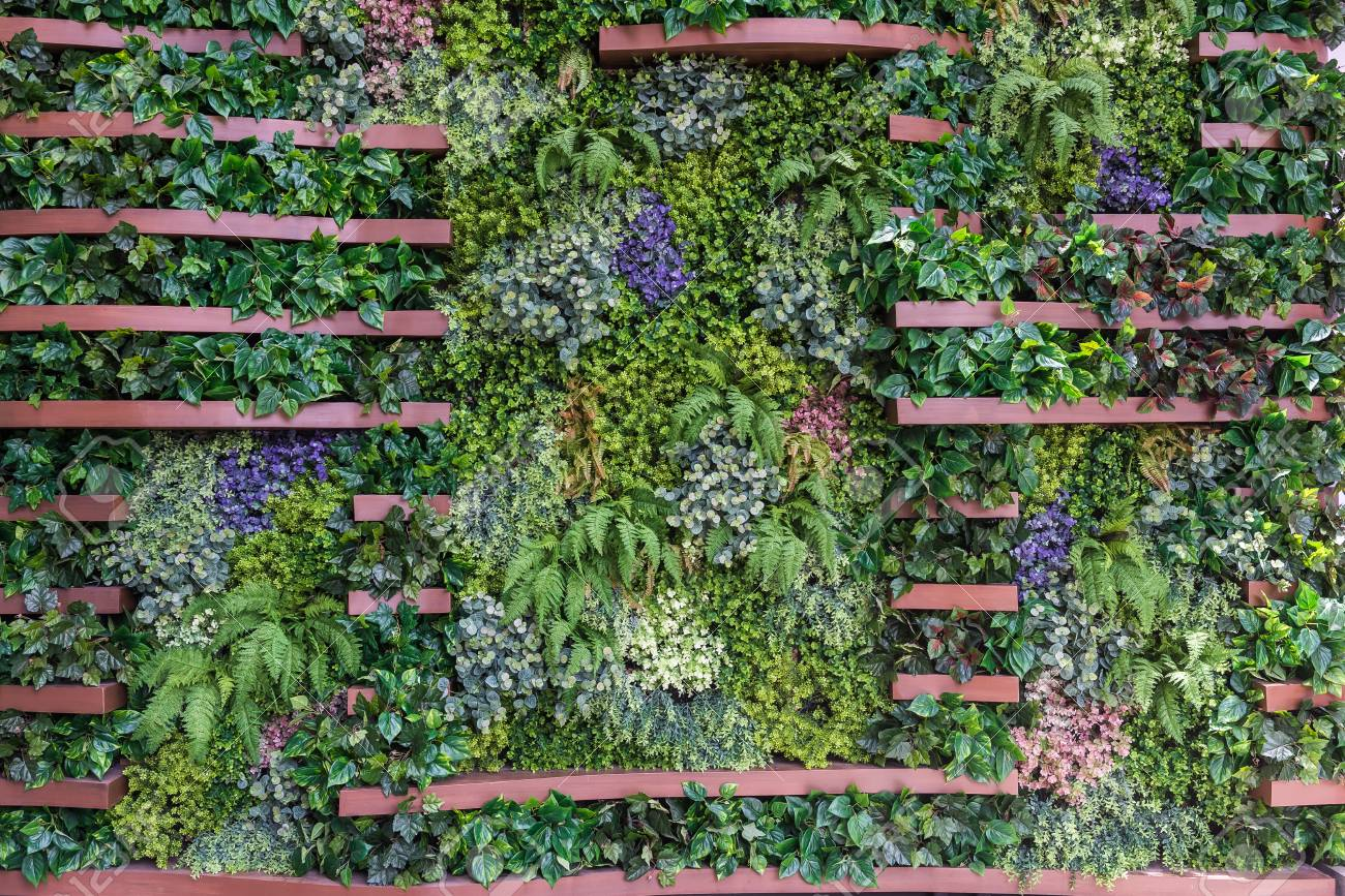 Vertical Garden Wall Background Variety Of Plants On Vertical Stock Photo Picture And Royalty Free Image Image 90748319