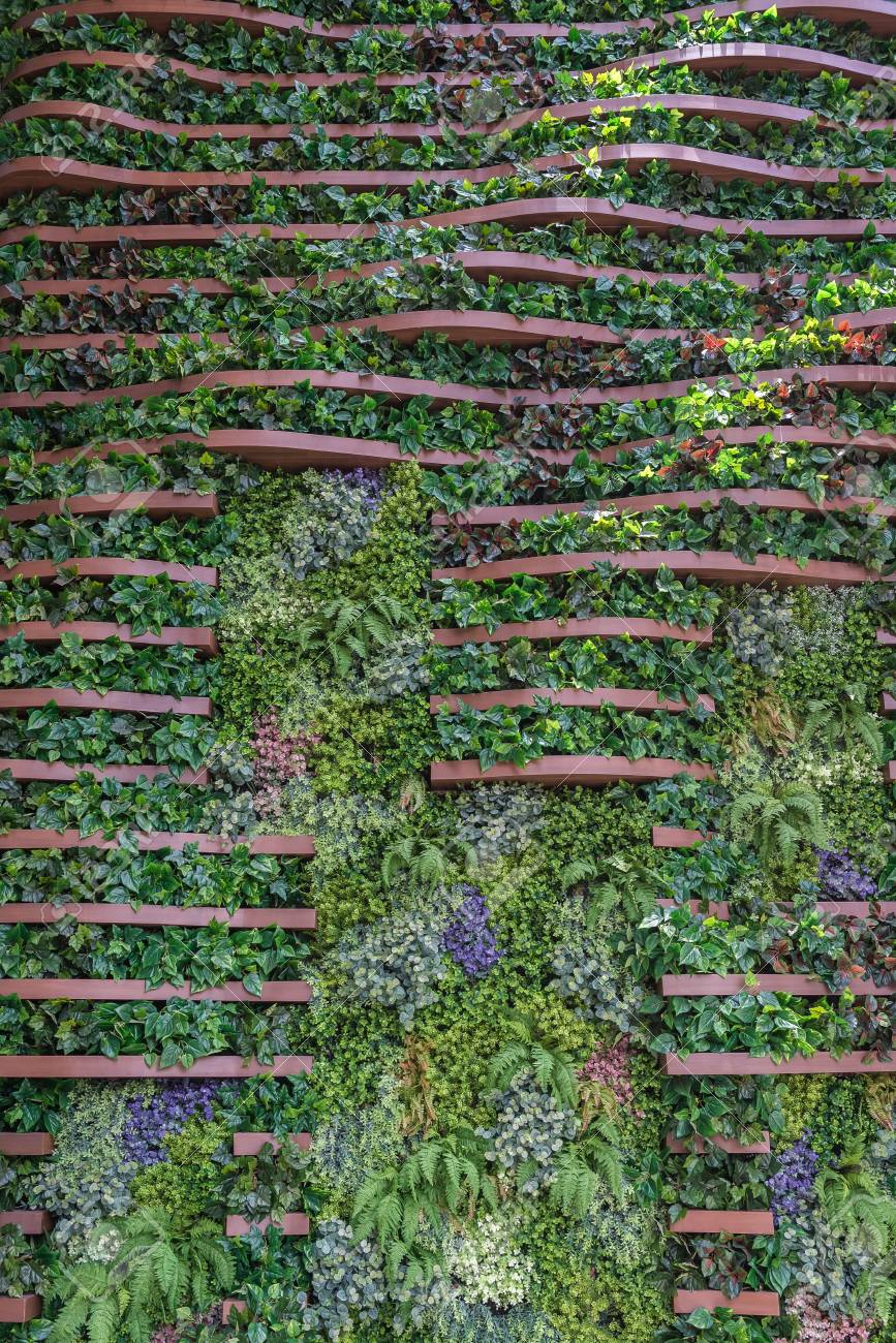 Vertical Garden Wall Background Variety Of Plants On Vertical Stock Photo Picture And Royalty Free Image Image 90783483